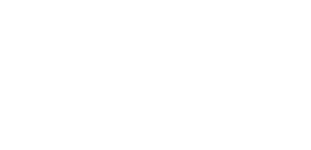 Hotel orion logo